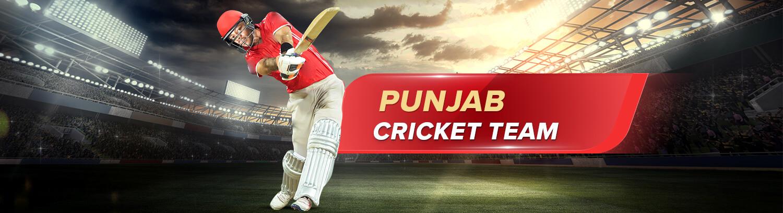 Punjab T20 league Team