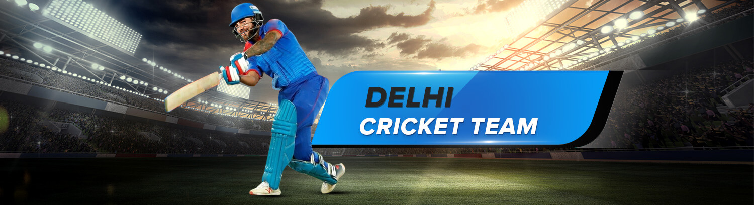 Delhi T20 league Team